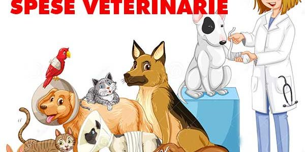 spese veterinario
